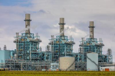 Biomassa voor Eemshavencentrale